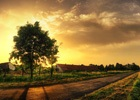 淘宝618列车全自动刷任务app